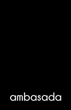 Image result for ambasada timisoara logo